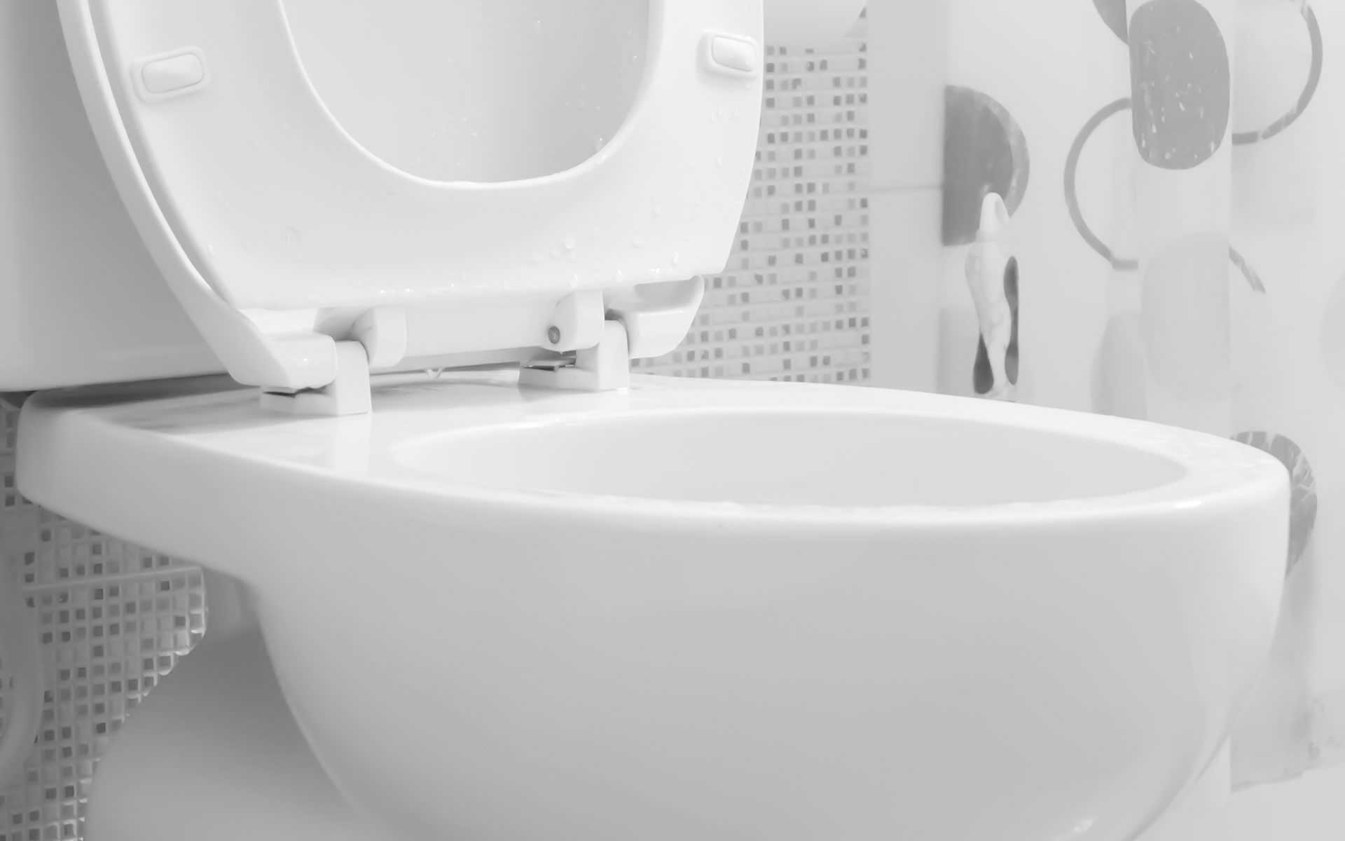 Colonial Heights Toilet Repair